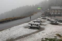 影/追雪超嗨!合歡山中午起飄雪部分路段需掛雪鍊