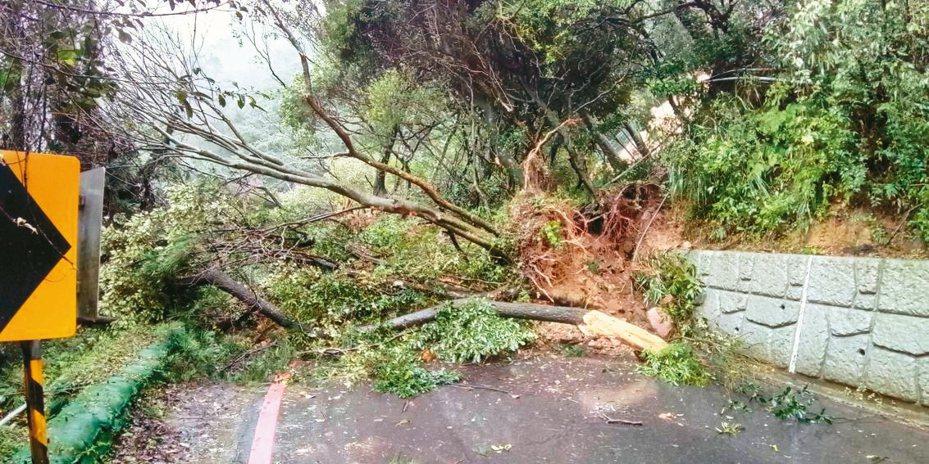 陽明山百拉卡公路土石崩塌,面積多達800平方公尺,陽管處預估最快要1個月才會搶通。 圖/北市工務局新工處提供