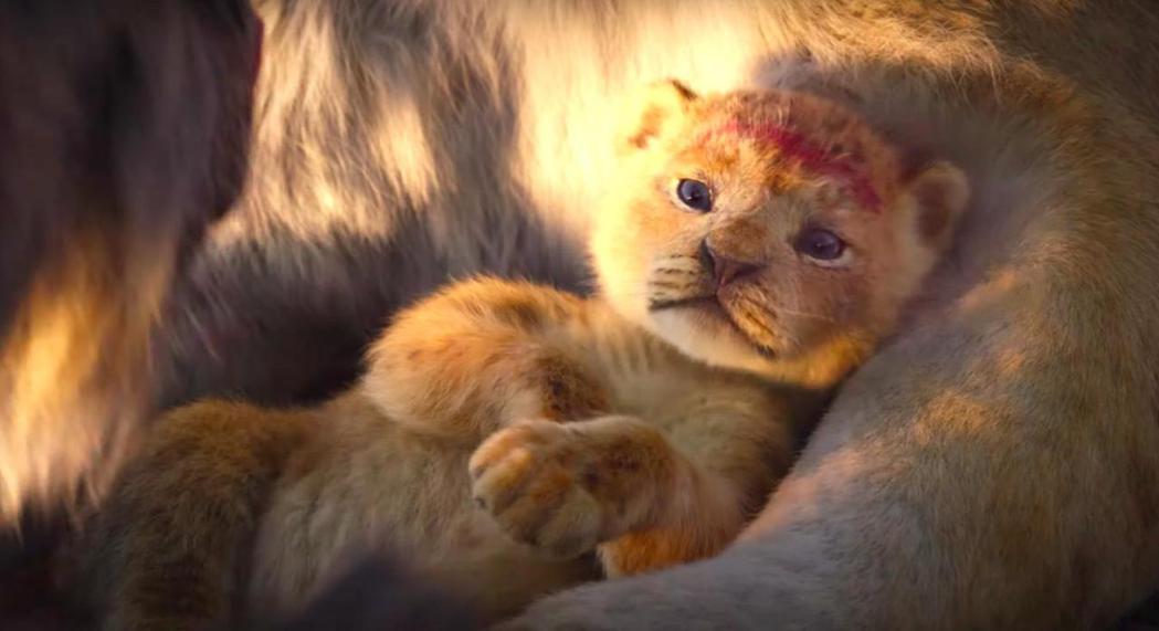 新版「獅子王」全球狂賣,卻被不少評論認為是年度劣作。圖/摘自imdb