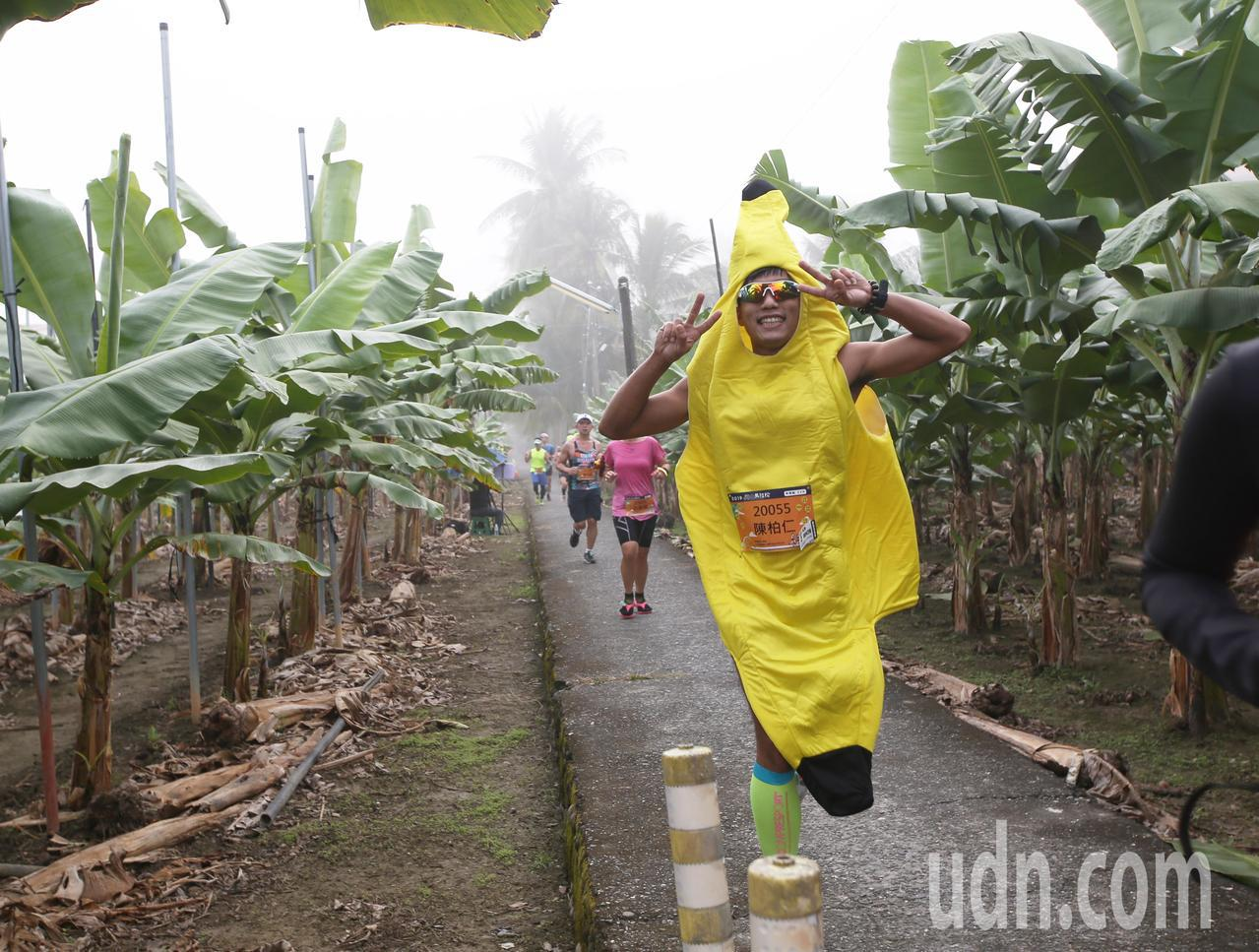 第三屆旗山香蕉馬拉松今晨開跑,全台超過5000位跑友齊聚旗山,還有人特意裝扮前來...