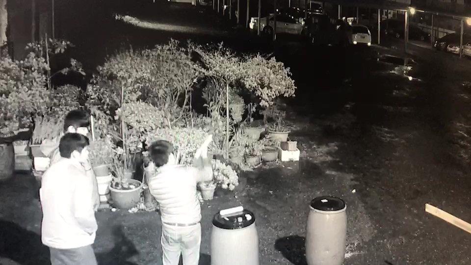 三名男子施放信號彈,險造成火燒車。圖/翻攝自黑色豪門企業