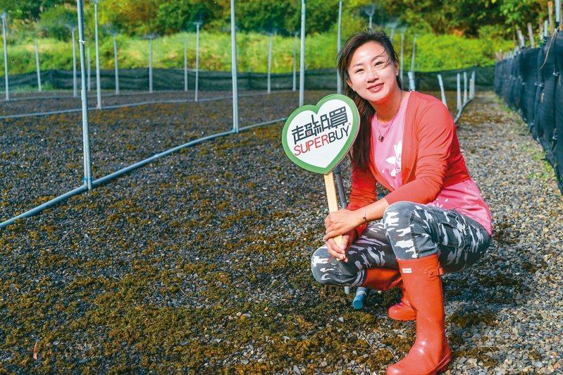 從都會時尚女變身鄉下農婦的丁采綸力行有機栽植,從農業「門外漢」到通過有機認證,並導入乾燥技術延長賞味期,一路上吃足苦頭,今年獲農委會百大青農肯定。圖/丁采綸提供