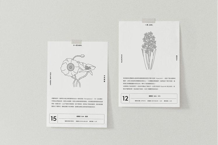 每天一種植物插畫、一句小語與一則生活指南。(圖/新光三越提供)