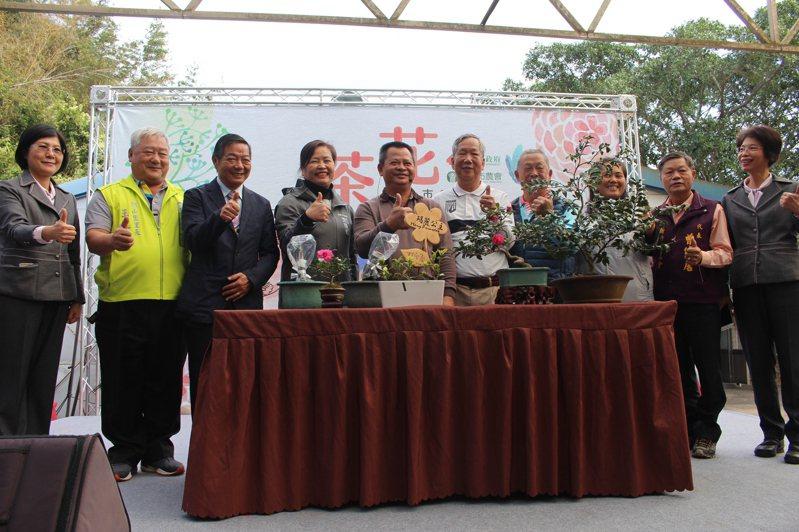新竹市茶花季自12月14日起持續到明年2月29日。記者張雅婷/攝影