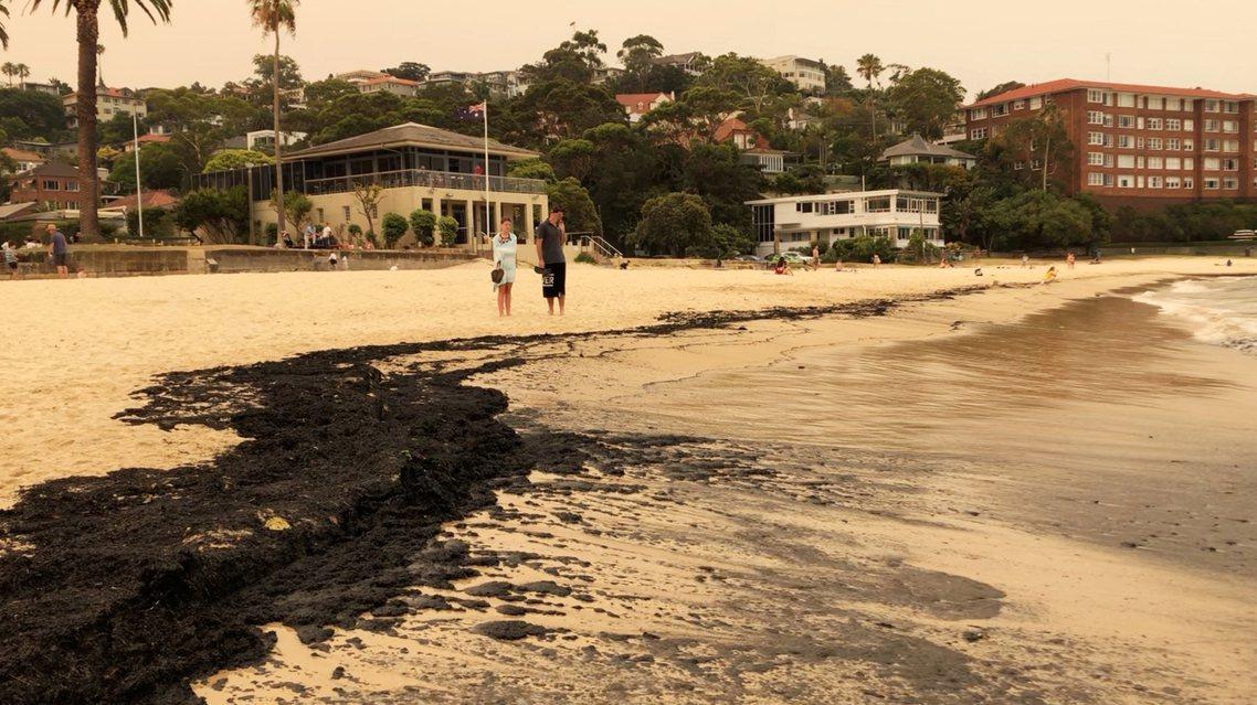 澳洲正值野火焚燒的盛夏,但持續數週各地猛燒的森林大火,不僅讓雪梨煙霧迷漫,北岸的...