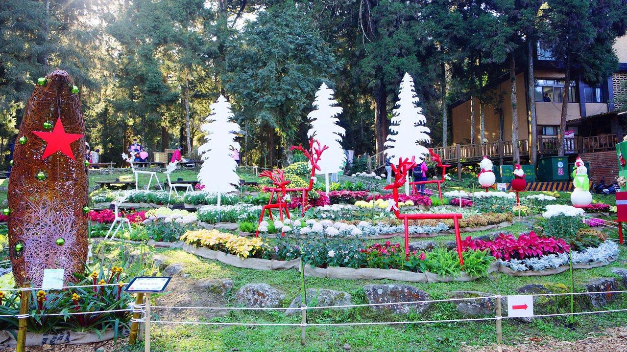 來不及到台北觀看士林官邸菊展的中南部民眾,今年12月14日起菊展再次移師到風景秀...