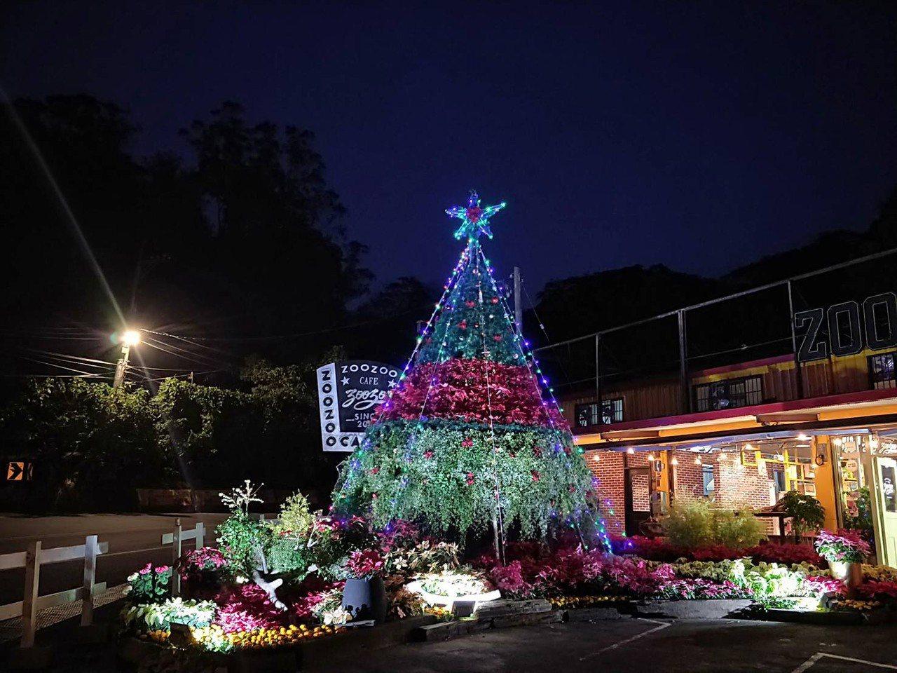 桃園市復興暨大溪區台七桃花源休閒農業區是北台灣重要花卉產地,近3年都選在聖誕節期...
