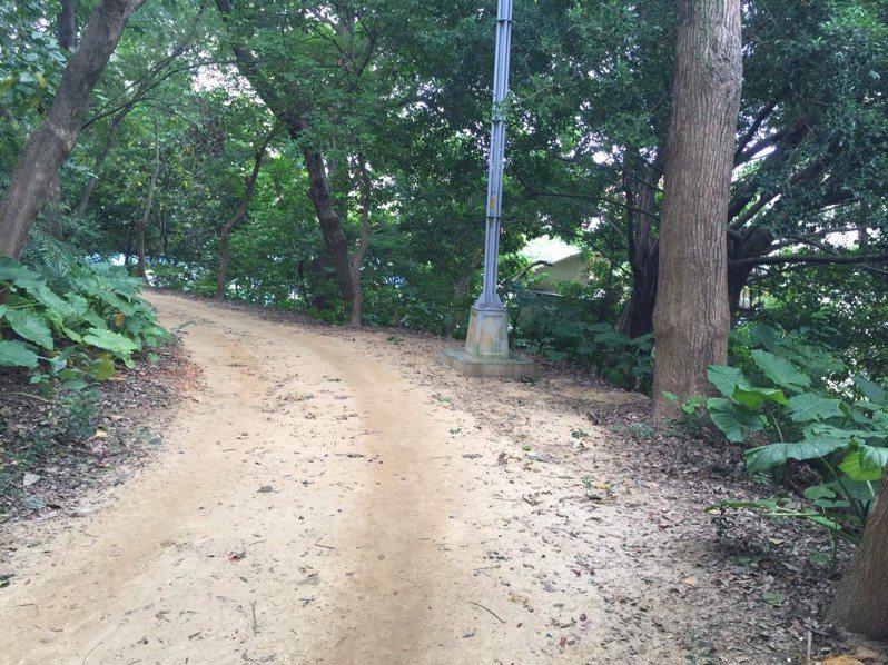 自強公園休閒步道使用率高、土石鬆軟雨水沖刷雨後泥濘不堪,嚴重影響民眾休憩安全及植物生長。圖/中和區公所提供