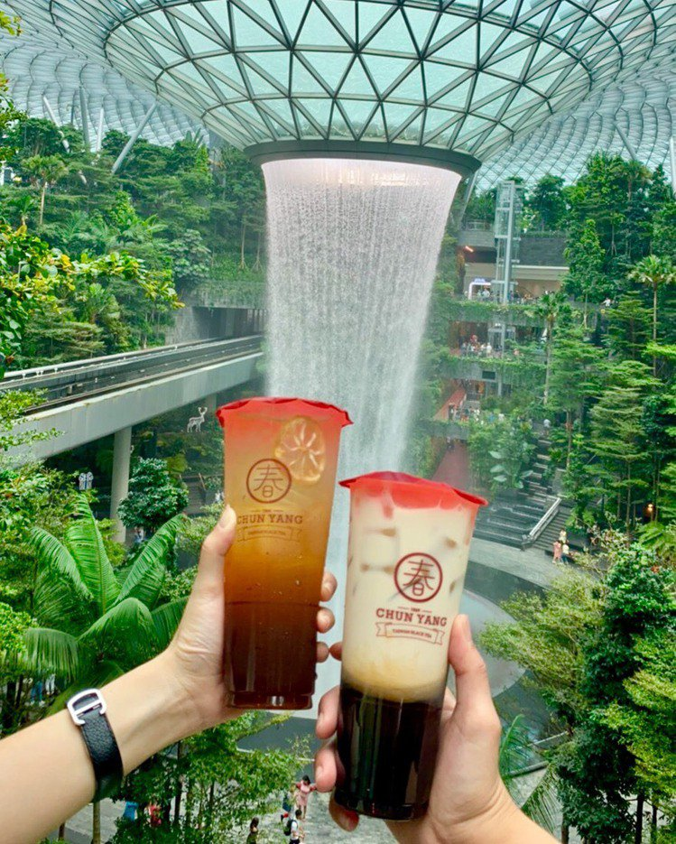 新加坡春陽茶事提供道地台灣好茶。圖/春陽茶事提供