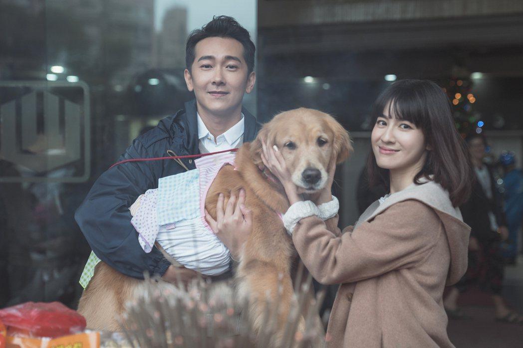 施名帥(左)、連俞涵在「黑喵知情」中演夫妻。圖/LINE TV提供