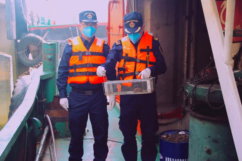 廣東佛山海關檢出攜帶漢他病毒老鼠。新浪微博照片