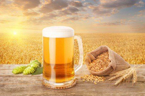 啤酒廠與當地麥田合作,讓每一口啤酒都喝得出當地味。 圖/pixaboy