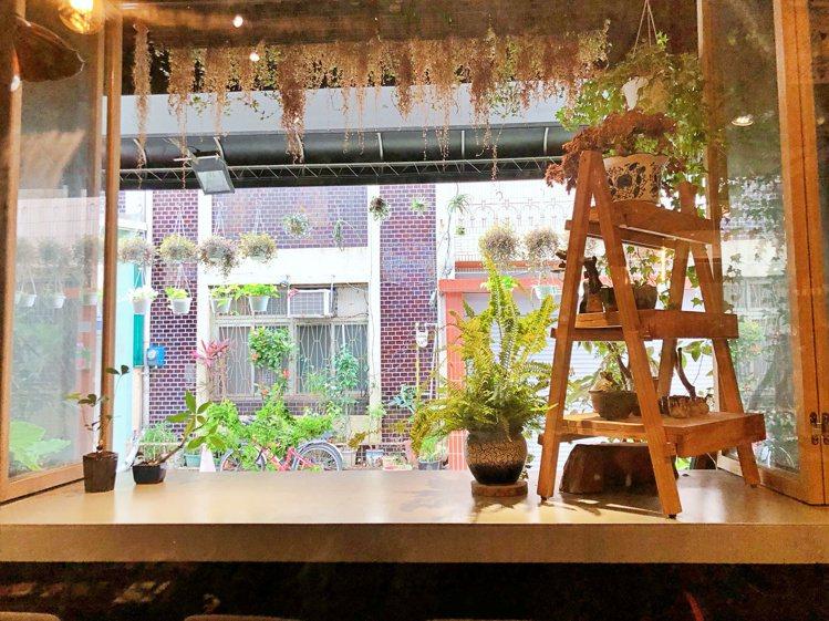 鬱鬱整間店最大特色就是被滿滿植物給包圍。記者魏妤庭/攝影