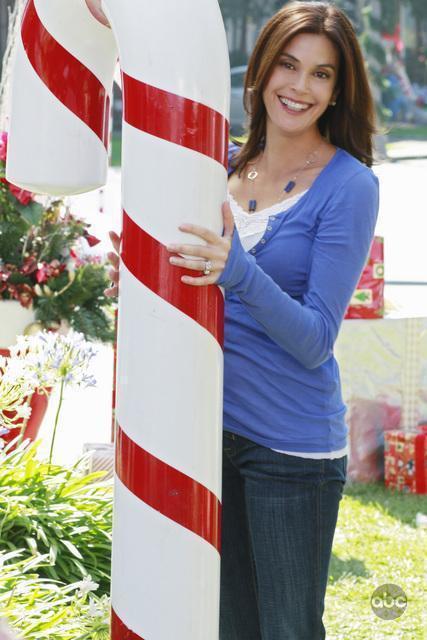 「慾望師奶」是泰莉海契的代表作。圖/摘自imdb
