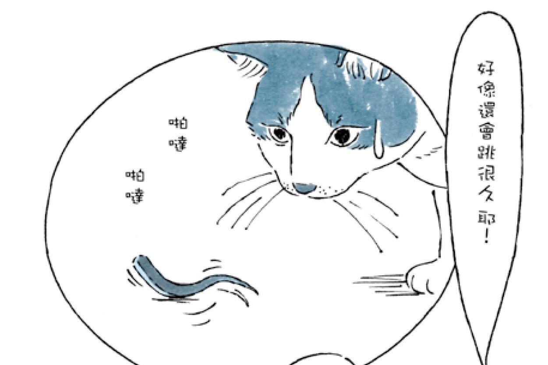 【圖個簡單】久留飛 克明/日本石龍子