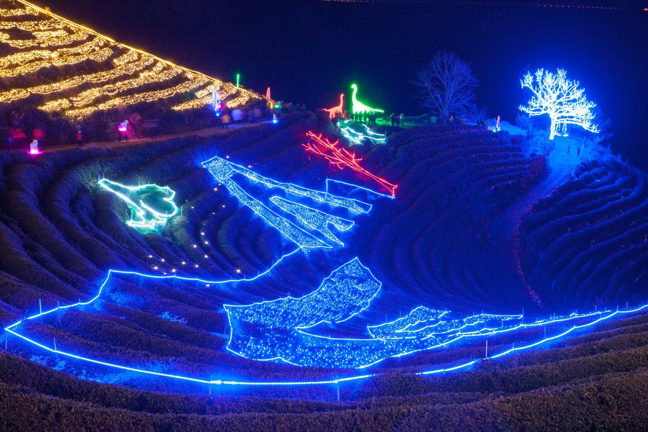 「寶城茶園燈節」透過樹木與燈飾打造銀河隧道、茶園燈海等景觀。圖/韓國觀光公社提供