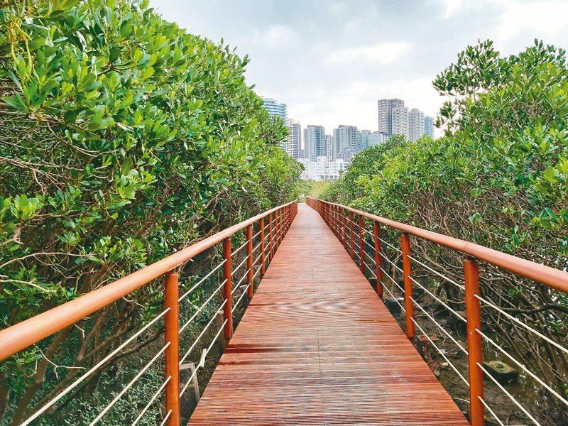 紅樹林木棧步道整修後,今天將重新開放。 圖/羅東林區管理處提供