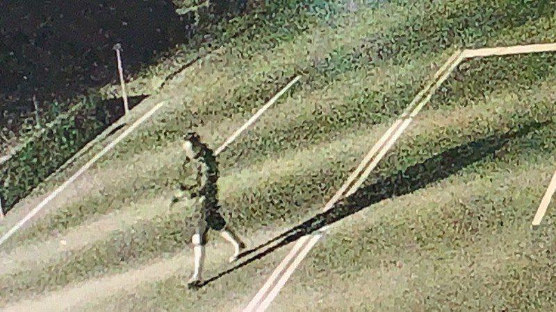 曾姓男子在火警後跑出台3線省道的畫面。記者吳淑玲/翻攝