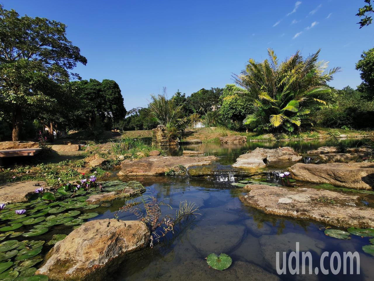 五柳園有仿原始溪流生態池,強調大自然田園風光,要讓入園者體會五柳先生意境。記者卜...