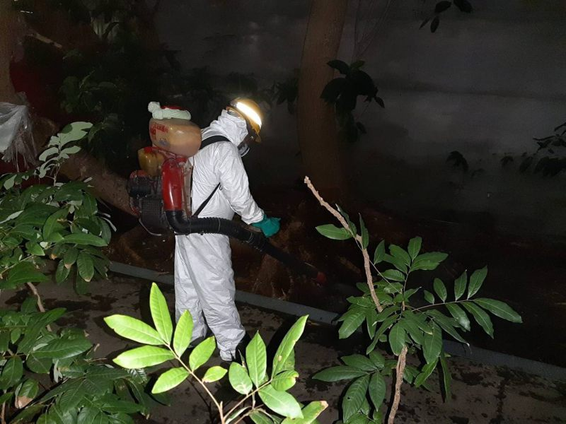 環保局人員於發現豬屍當天在現場進行全面性消毒,後續經家衛所檢驗,確定該豬屍未檢出非洲豬瘟病毒。圖/北市動保處提供