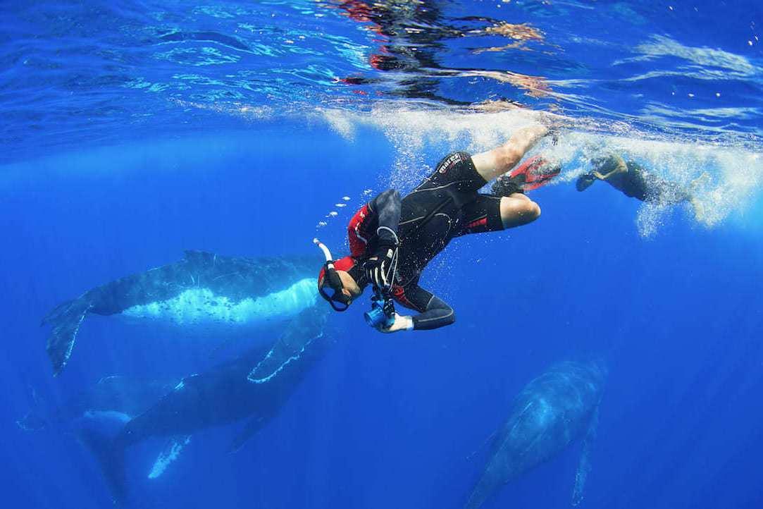 期盼台灣人看見海 「男人與他的海」打破集資紀錄