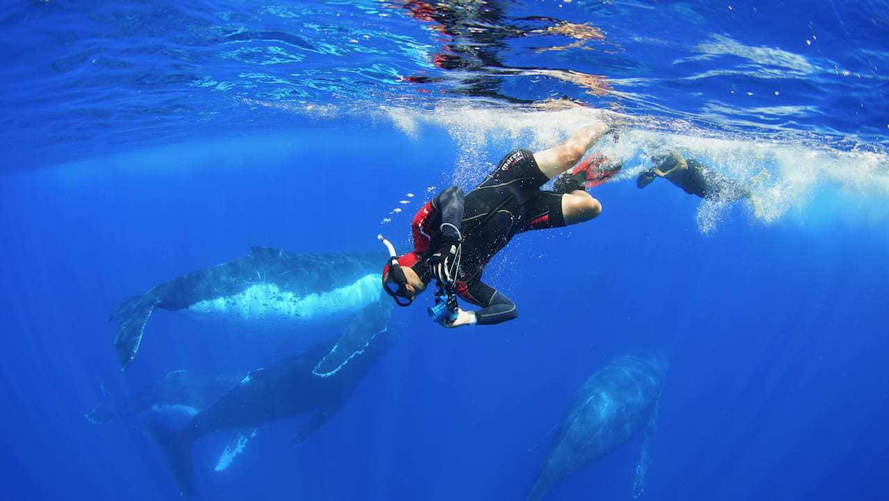 導演黃嘉俊因潛水興趣巧妙連接起拍攝紀錄片《男人與他的海》的契機。圖為潛入水下搶時...