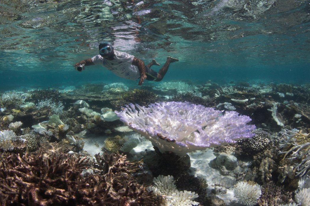 馬爾地夫是一系列環狀珊瑚礁組成,賣點是每個島都是度假勝地、半透明的碧綠海水以及原...