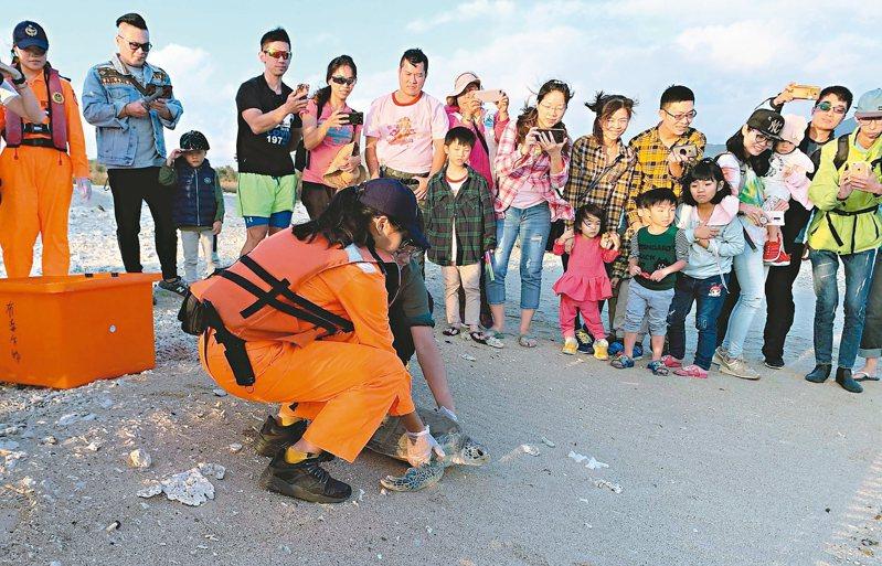 海巡署人員協助野放海生館照顧近半年的綠蠵龜,希望牠平安返回大海生活。 圖/高雄市政府海洋局提供