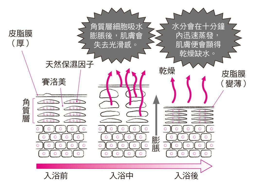 沐浴後肌膚容易乾燥的原因 圖/摘自《自己的皮膚自己救!》