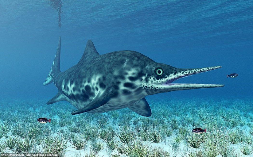 魚龍想像圖。魚龍非恐龍,而是海洋爬行動物,外觀和海豚相似,數量在侏羅紀達到高峰,...