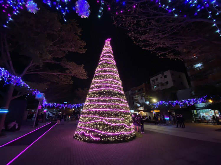 粉紅耶誕樹。記者張芳瑜/攝影