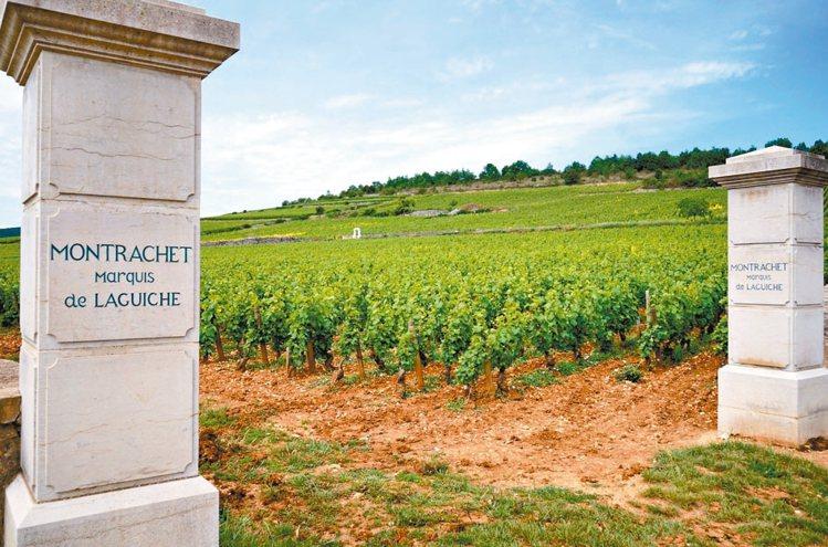 蒙哈榭特級園最大的地主Marquis de Laguiche,擁有最北端處的2....