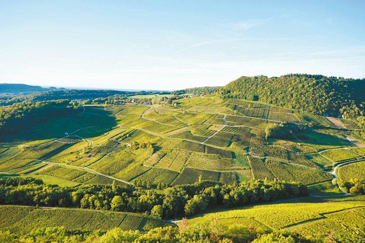 隱世自然的法國侏羅(Jura)區,酒風與價格皆純樸。圖/聶汎勳  ※ 提醒您...