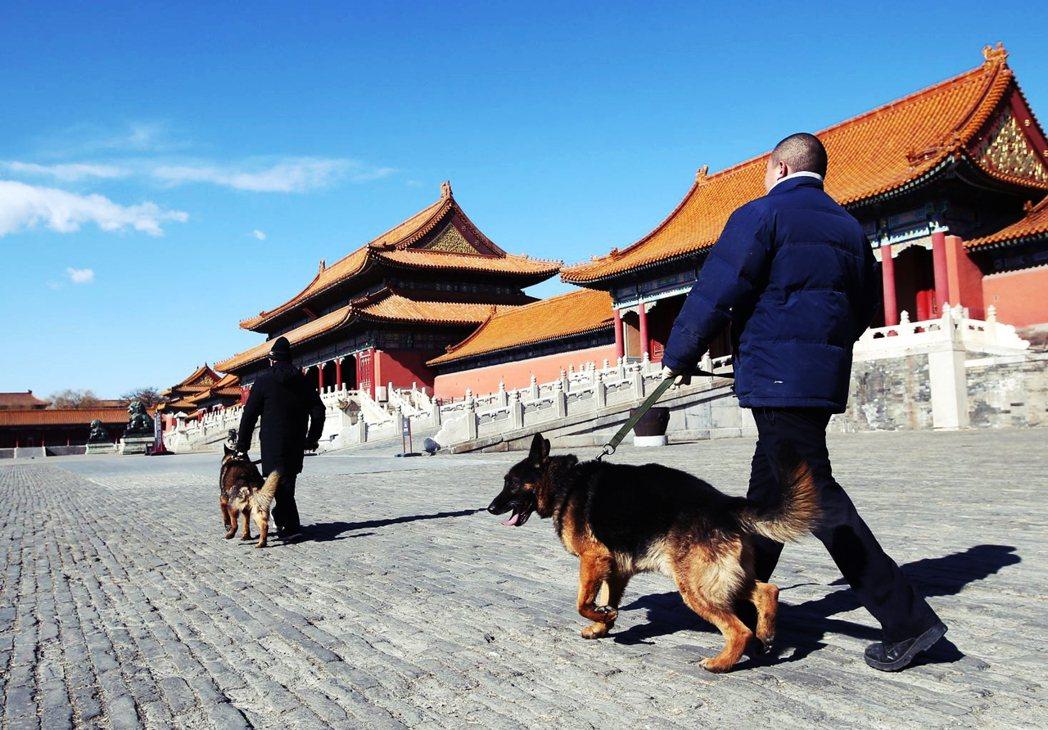 中國的限狗令還有哪些問題?如何處理才可能找到更好的解方?城市與農村是否能夠以同一...