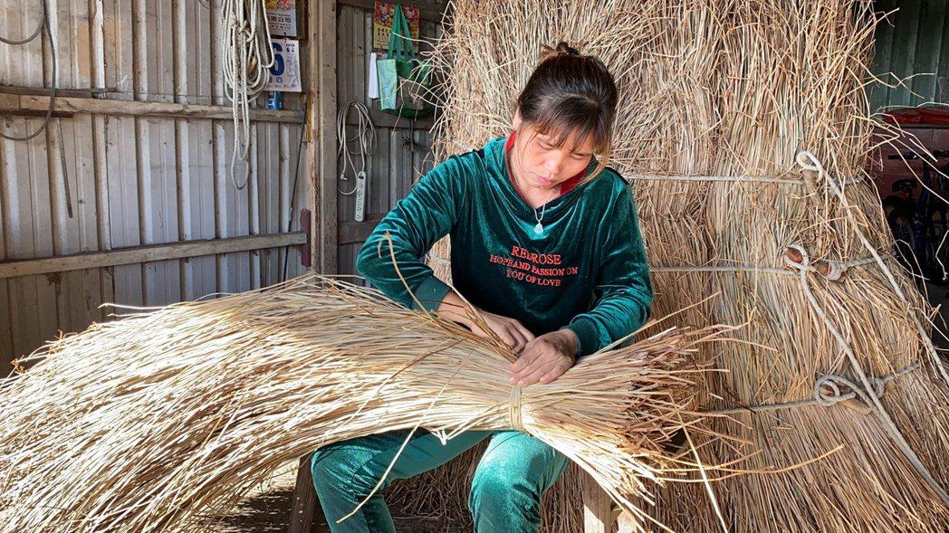 苗栗苑裡種藺草面積最大的李姓農友,今年因病過世,妻子越南新住民丁家芊接棒撐起。 ...