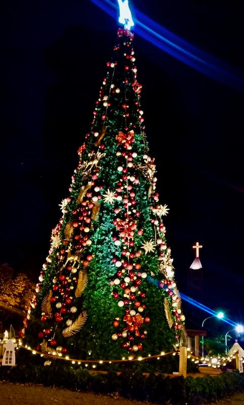 12/1已點燈的九公尺聖誕樹,夜晚閃爍照耀白燈塔公園