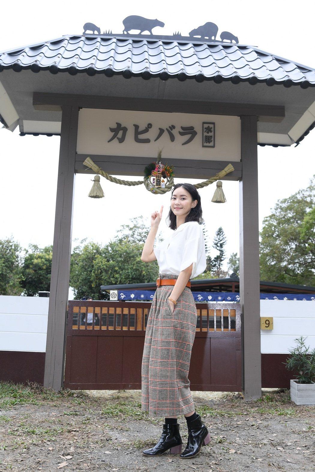 鍾瑶出席埔心牧場水豚入村記者會。圖/三立提供