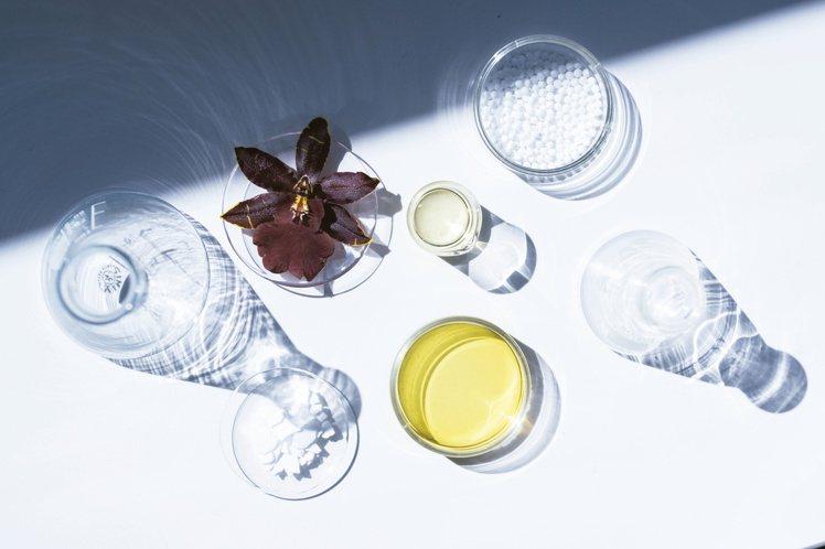 嬌蘭多種天然珍稀植物萃取,讓肌膚充滿能量。圖/嬌蘭提供