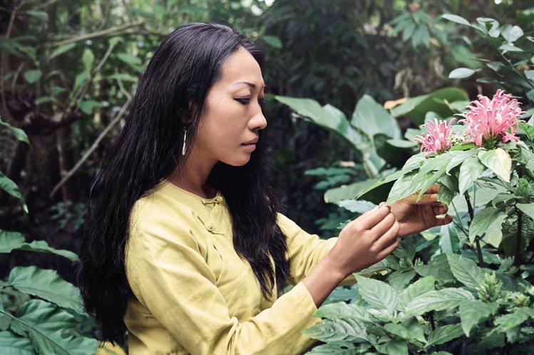 嬌蘭打造全球整合蘭花研究平台。圖/嬌蘭提供