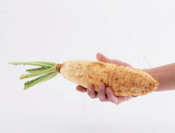 拿在手中有沉重感,代表白蘿蔔水分充足、肉質細嫩。 圖片來源/台灣好食材(來源:王...