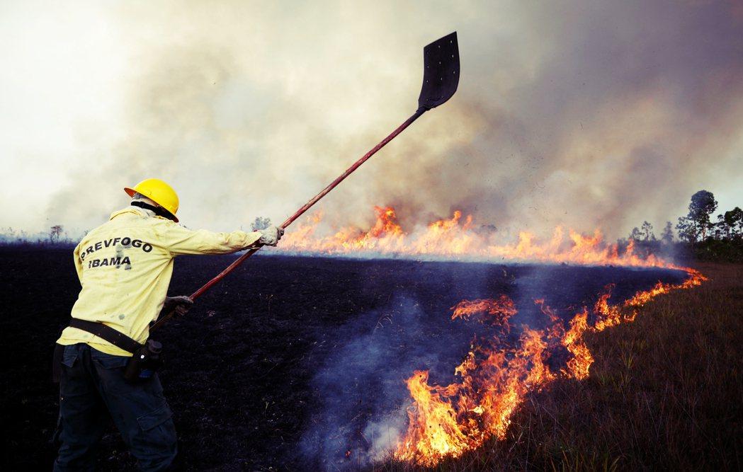 截至2019年12月,巴西的起火數(19萬6,000多起)整體而言不是「史上最嚴...