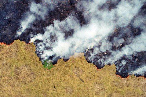 2019年,巴西亞馬遜雨林大火的消息,席捲了全球的新聞頭版。時序進入2020,到...