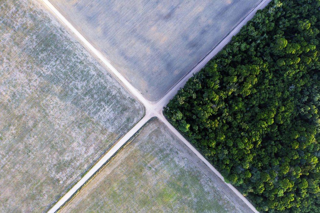 要抵制的,是亞馬遜的「零毀林」大豆?還是塞拉多「毀林但合法」的大豆?還是塞拉多不...