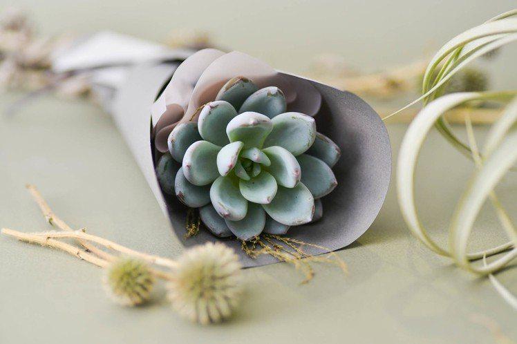 情人節多肉花束 – 一朵小植愛(圖/有肉 Succulent & Gift提供)