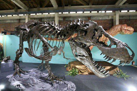 吳鳳27日帶著4歲女兒Ekim和老婆Rynne到華山文創園區搶先看「超·大恐龍展」,吳鳳在記者會上笑說,活到39歲才第一次看到真正的恐龍,不只是小朋友看得開心,連大人都樂在其中。因為「超·大恐龍展」...