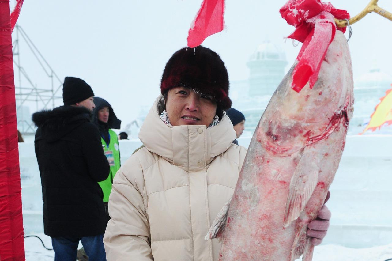 """吉林查幹湖冬季抓""""頭魚"""" 近300萬銷量"""