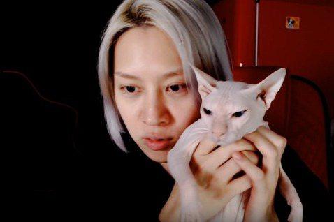 Super Junior的金希澈昨晚在YouTube直播,首度鬆口證實收養了雪莉的貓「布林」。他和雪莉親如兄妹,雪莉走後他哀痛不已。先就就有眼尖的粉絲發現疑似雪莉的貓在金希澈家出沒,希澈昨大方把貓抱...