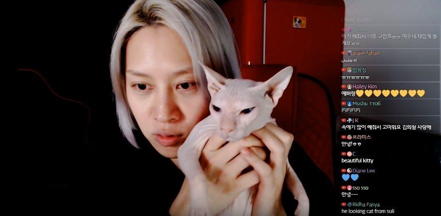 金希澈抱著貓咪向粉絲報平安。圖/摘自YouTube