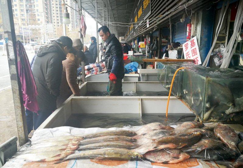湖北武漢市華南海鮮市場出現不明原因肺炎病人,不少民眾憂心「2020年的新年禮物是SARS重現?」由於SARS初期症狀像流感,診斷不易,引發人心惶惶。圖/中新社