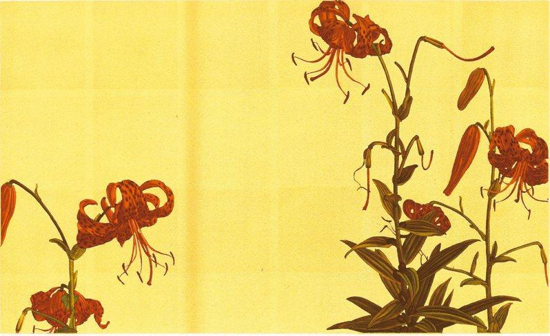 宮山廣明版畫作品〈Tiger lily 96〉